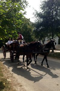 ColonialWilliamsburg2